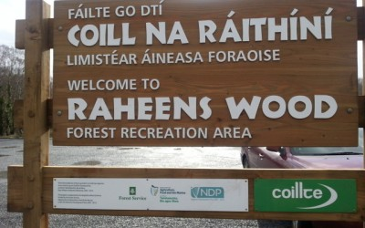 Raheens Woodland
