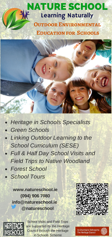 Heritage in Schools ireland