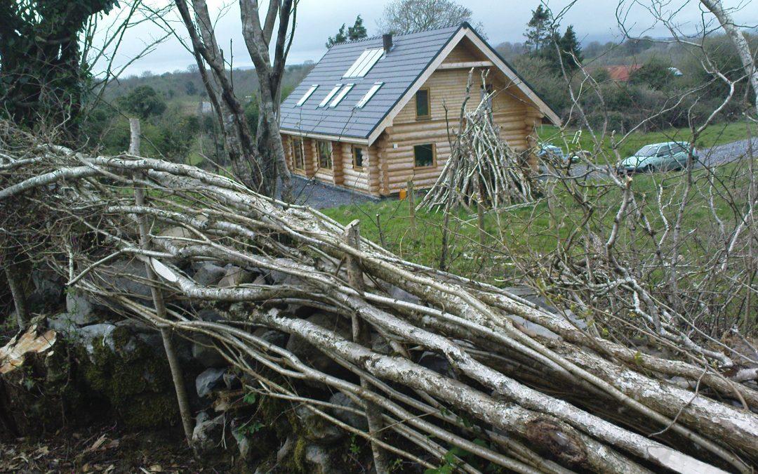 Woodland Skills